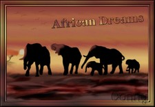 African1