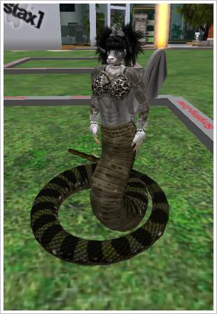 Schlangenwidderdrache 001