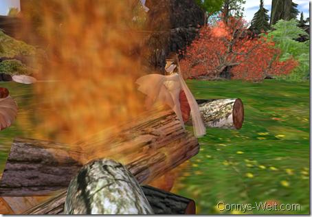 Wärme eines Feuers