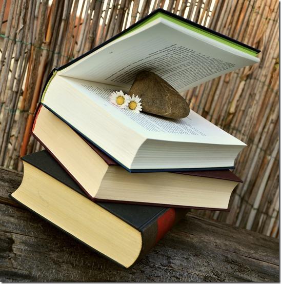 books-676420_1280